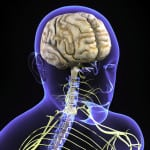 Brain injury and concussions