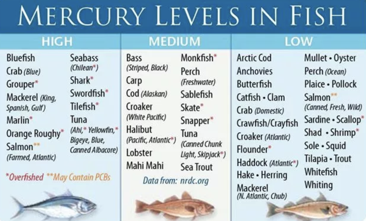 Clickbait pr on seafood and pregnancy reels in reporters for Low mercury fish pregnancy